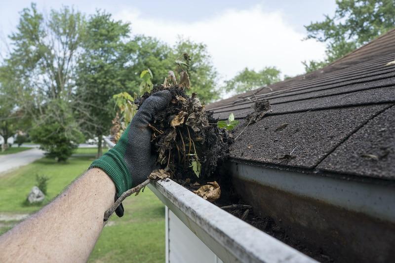 Gutter Cleaning Dirt